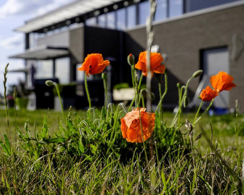 ma2015jrt5 - © baudouin litt, photographe - © eric vandebroek, architecte